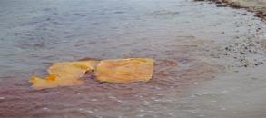 jaws raft