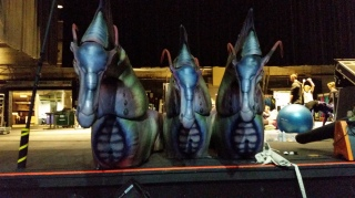 Direhorses ready to perform